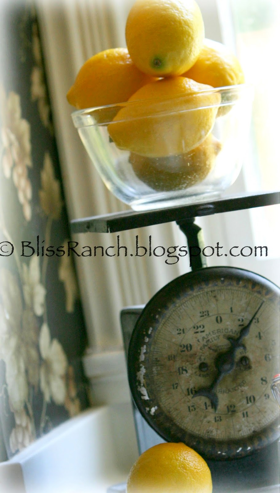 From My Front Porch To Yours- How I Found my Style Sundays-Vintage Scale Bliss-Ranch.com