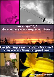 barb's challenge