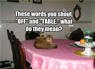 "These words ""off"" and ""table"" what do they mean?"