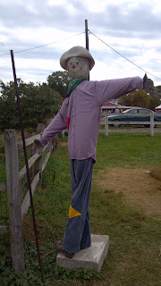 scarecrow with pink shirt and blue jeans