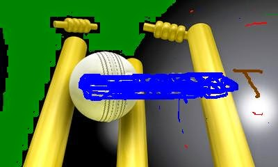 cricket world cup 2014