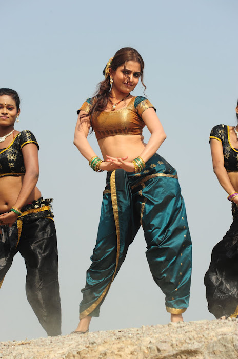 sheena shahabadi new song latest photos