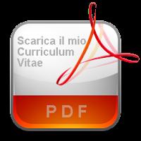 CV ing. Antonio Sagliocco _ dic 2013