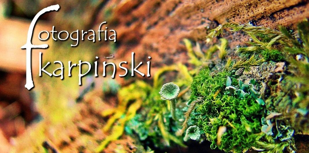 Fotografia Karpiński