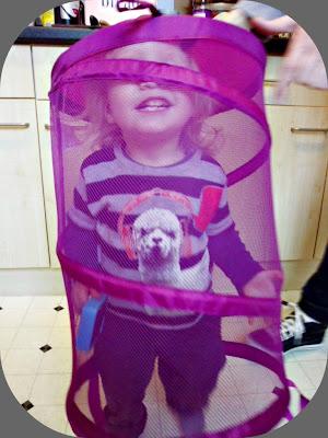 toddler in a basket
