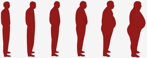fat normal skinny ile ilgili görsel sonucu