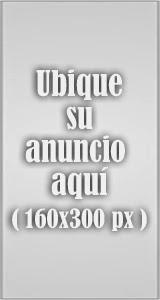 Banner Izq 160x300