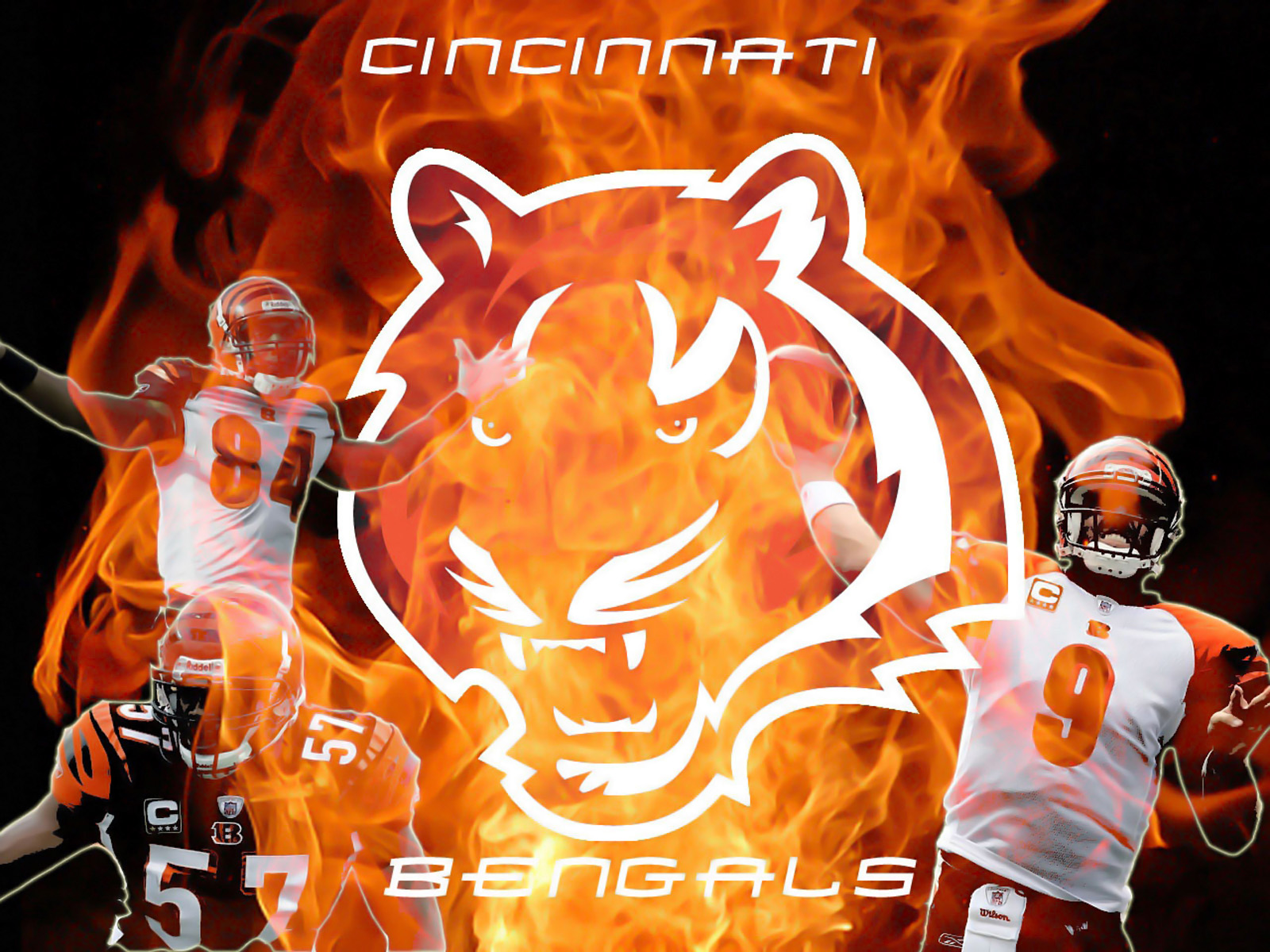 everything about all logos cincinati bengals logo pictures Chicago Bears Logo Outline Chicago Bears New Logo