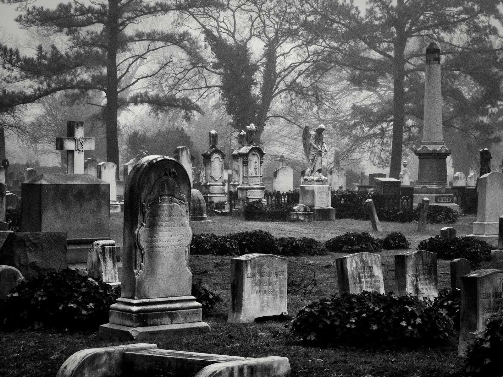 This Spooky Photo Was Taken At Norfolk Virginias Historic Elmwood Cemetery Nothing Says Halloween Like A Foggy Graveyard