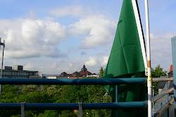 Flagge über Dresden
