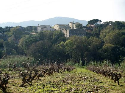 La zona de Can Balaguer des de Can Basar