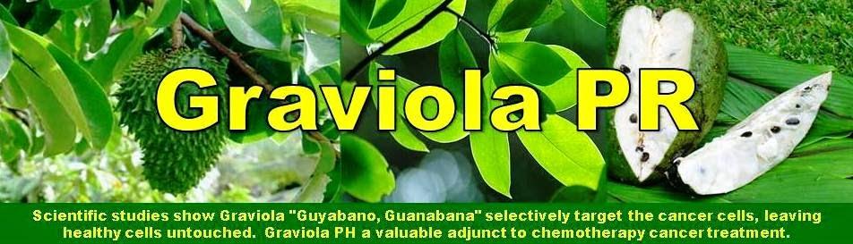 "Graviola ""Guyabano, Guanabana"" Leaf Powder"