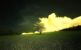 Beautiful-Morning-WideScreen-Wallpapers