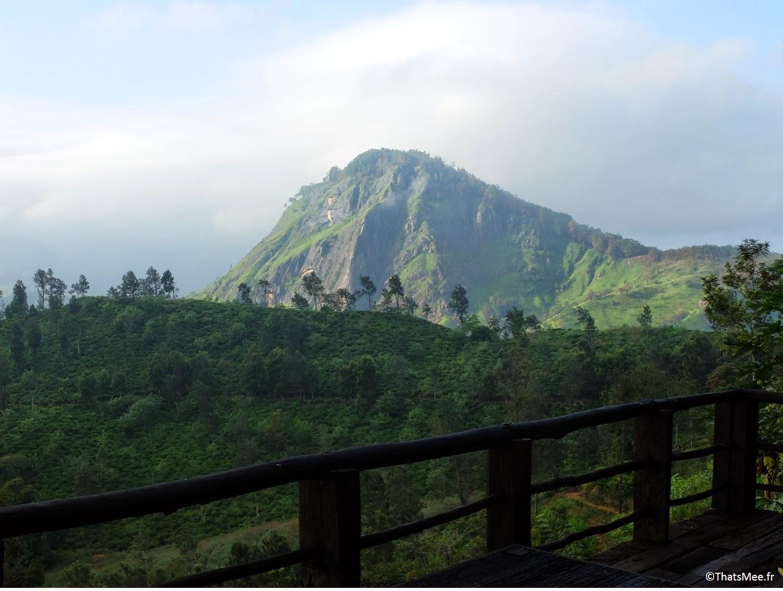 Small Adam's Peak pic d'Adam nature 98 acres resort hotel Ella Sri-Lanka