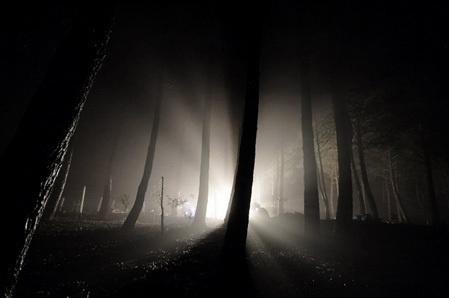 *مدونتے* بوحي نسج  بخيوط التجارب.. - صفحة 2 Light-in-darkness
