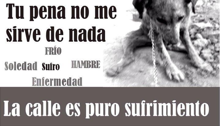 EL NUNCA LO HARIA.