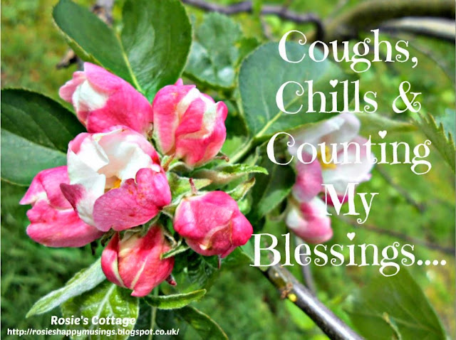 Apple Blossom Counting Your Blessings