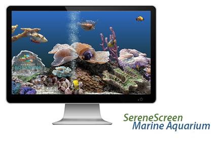 keygen 2 marine aquarium