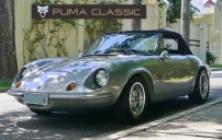 Puma GTS 1975 à venda