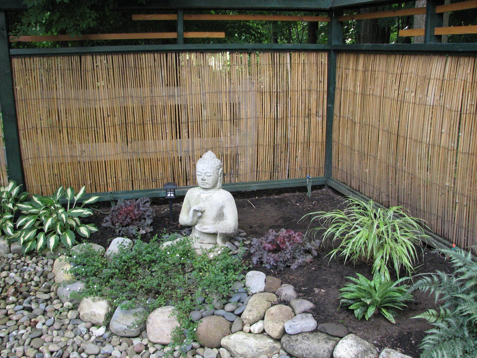 My Zen Garden So Many Plants So Little Time