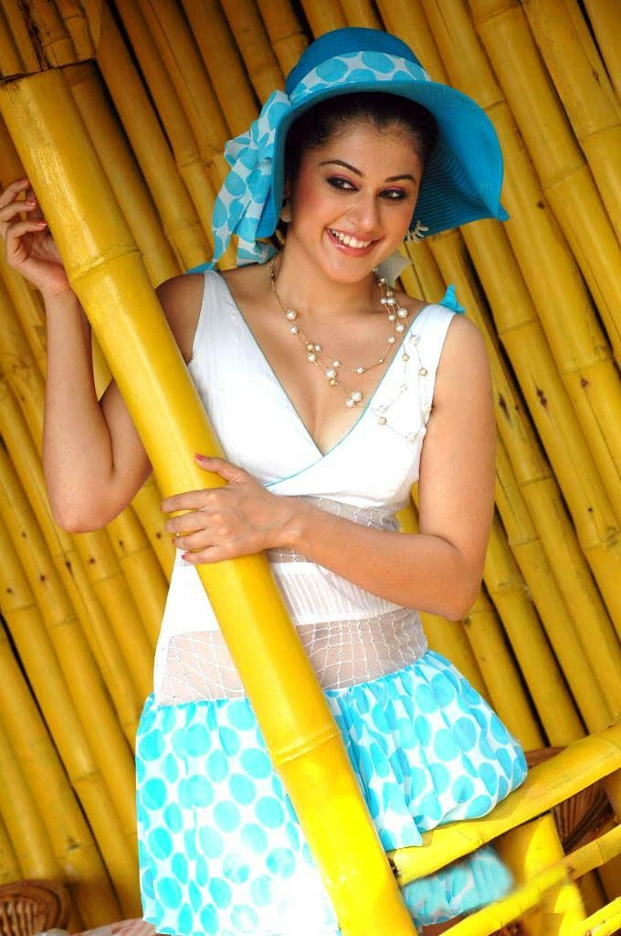 hot images indian model and hot actress tapsee pannu