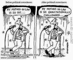 dictionary english politically correct
