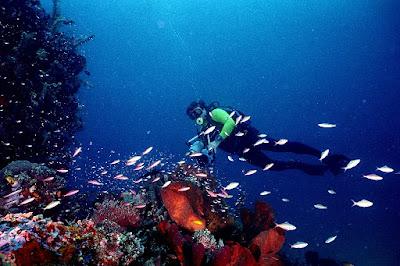 Indahnya Tempat Wisata Bunaken Manado – Surga Bawah Laut