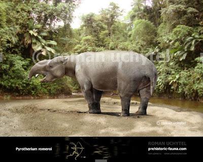 mamiferos extintos de Argentina Pyrotherium