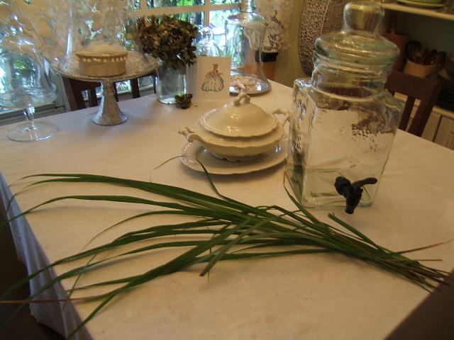how to cut lemongrass from garden