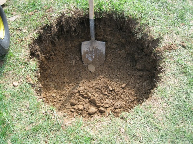 Plants and Stones: First You Dig a Hole