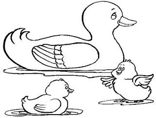 Dibujos de Patos