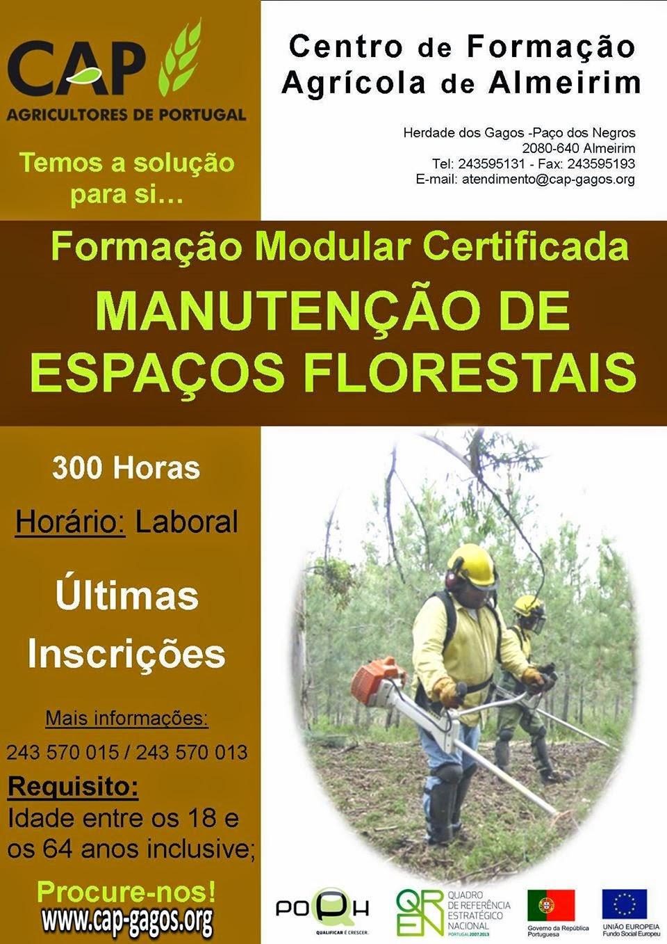 Formação financiada: Manutenção de Espaços Florestais – Centro de Formação Agrícola de Almeirim
