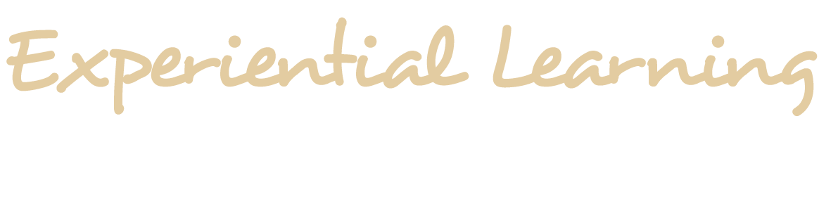 Trinity University Experiential Learning