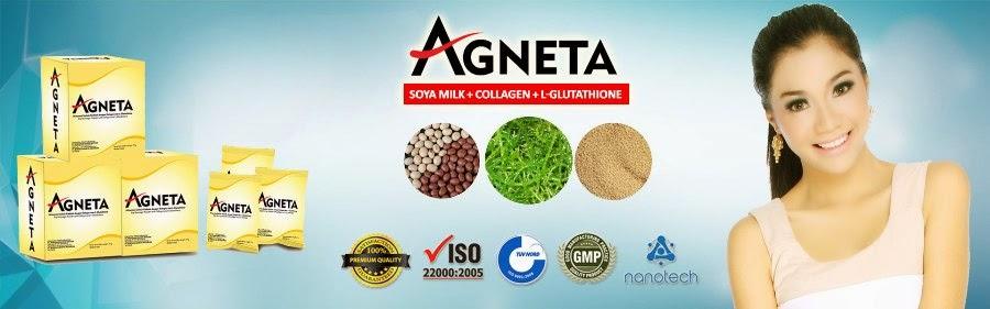 Distributor Agen Stokis Jual Agneta Indonesia