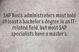 SAP BASIS Roles and Responsibilities 1