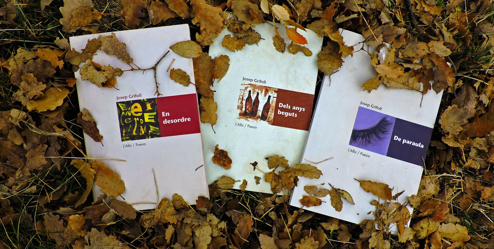 llibres griFOLL