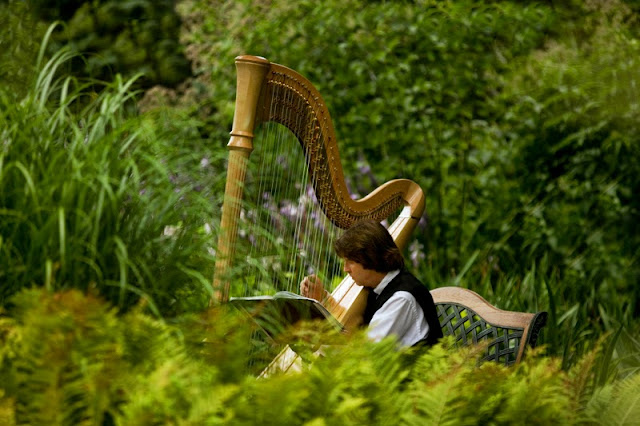 Harpist at outdoor wedding ceremony