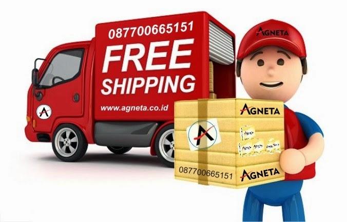 Agneta Free Ongkir Se Indonesia