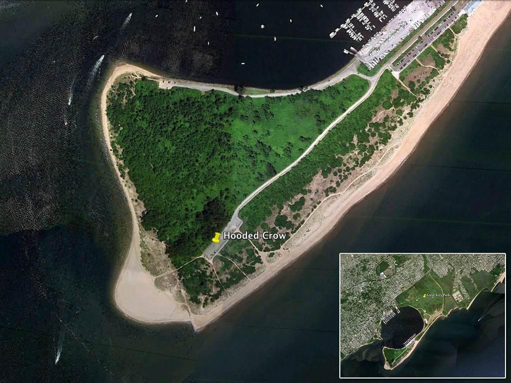 Staten Island Bird Society