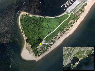 Gravel Staten Island