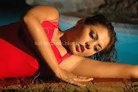 Madhu, shalini, hot, breast, images