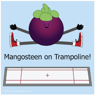 Mangosteen on Trampoline!
