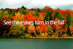 i want to see fall leaf colors