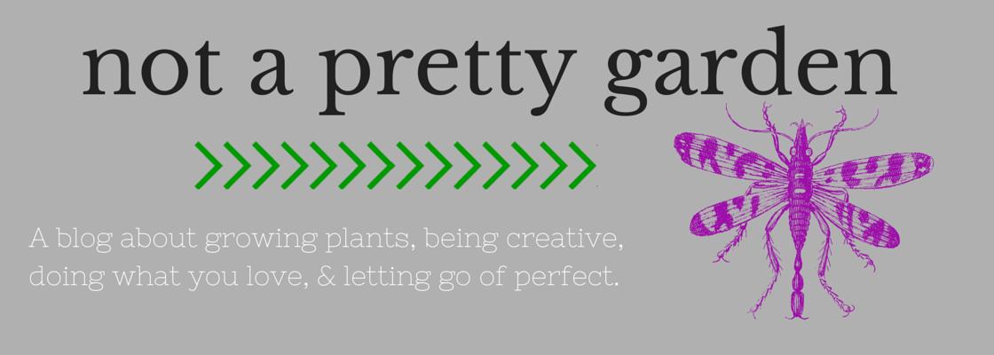 Not a Pretty Garden