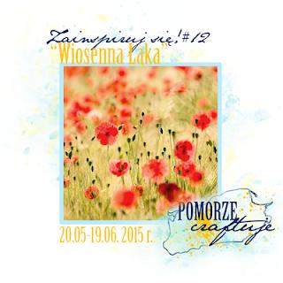 http://pomorze-craftuje.blogspot.de/2015/05/zainspiruj-sie-12-wiosenna-aka.html