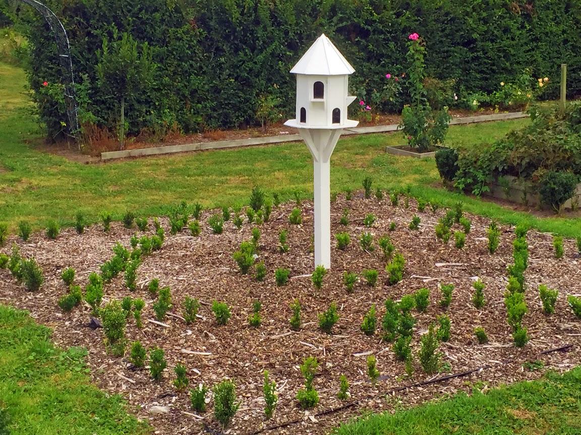 Willowbrook Park: Garden Update...
