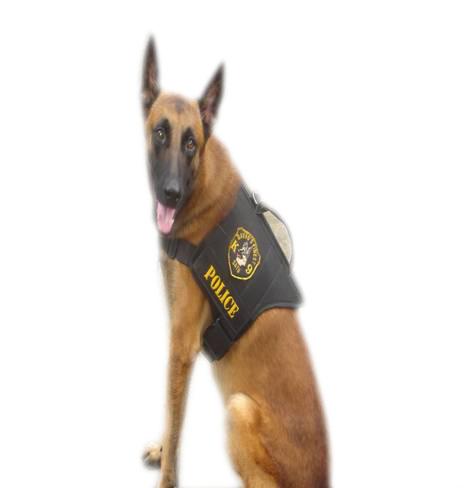 Davao city police dog named spike