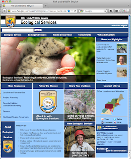 Snapshot of Ecological Services website