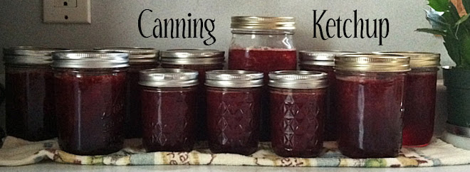 Canning Ketchup