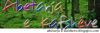 Abetare Shqip